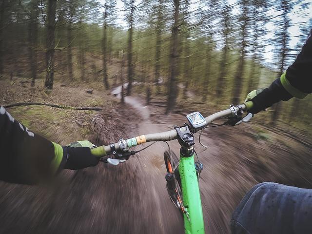 Albany Pine Bush Trail
